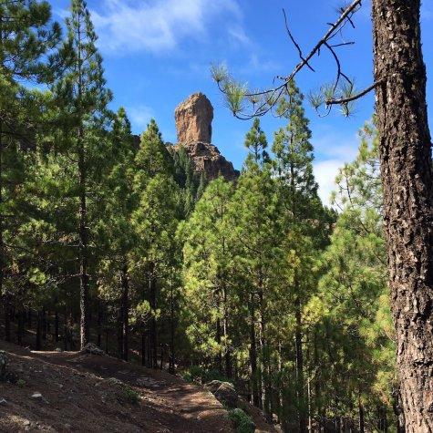 Senderismo por el Roque Nublo